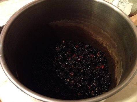 Pot of Blackberries