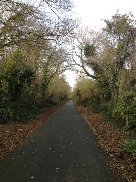 Finishing Off On The Old Railway Line