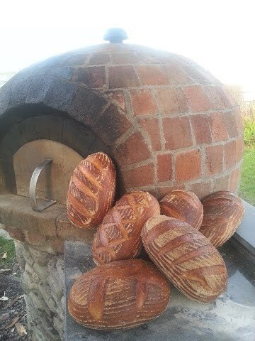 All Our Sourdoughs
