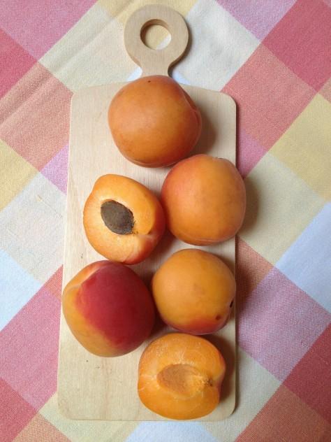 Delicious Juicy Apricots
