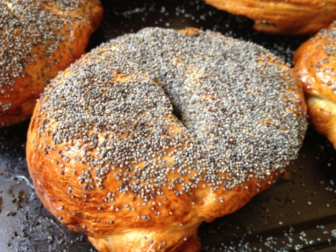 Homemade Poppyseed Bagel Hot From Oven