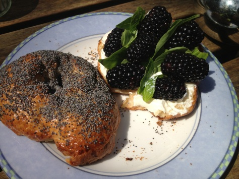 My Blackberry and Basil Bagel