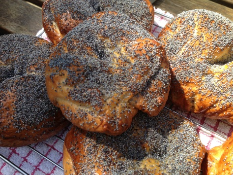My Brunch of Homemade Poppyseed Bagels