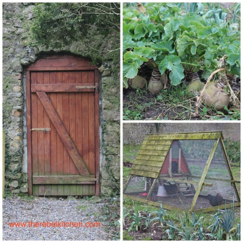 Exploring the Cloughjordan Vegetable Garden